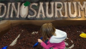 Learning and exploring at the Garden State Discovery Museum