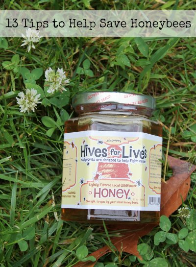 13 tips to help save honey bees with jar of honey