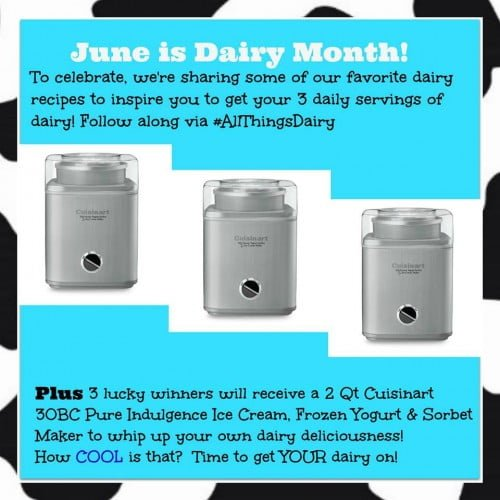all things dairy giveaway with cuisinart ice cream makers