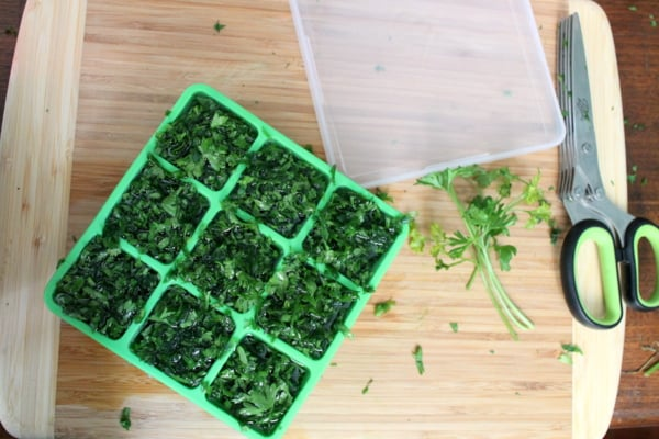 making frozen herb starters with parsley