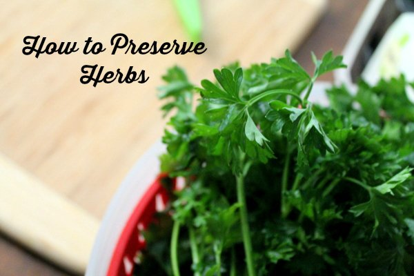 how to preserve herbs with Heather at realthekitchenandbeyond.com