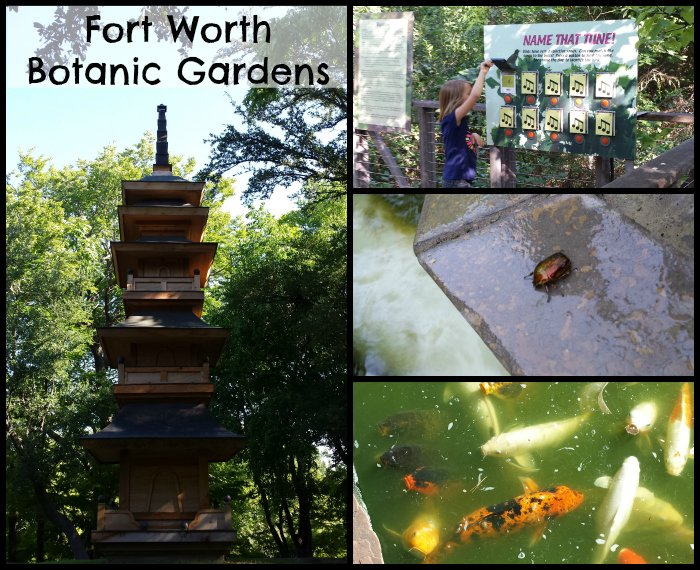 Fort Worth Botanic Gardens - www.realthekitchenandbeyond.com