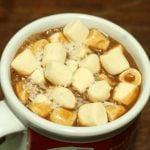 Vegan Pumpkin Coconut Homemade Hot Cocoa