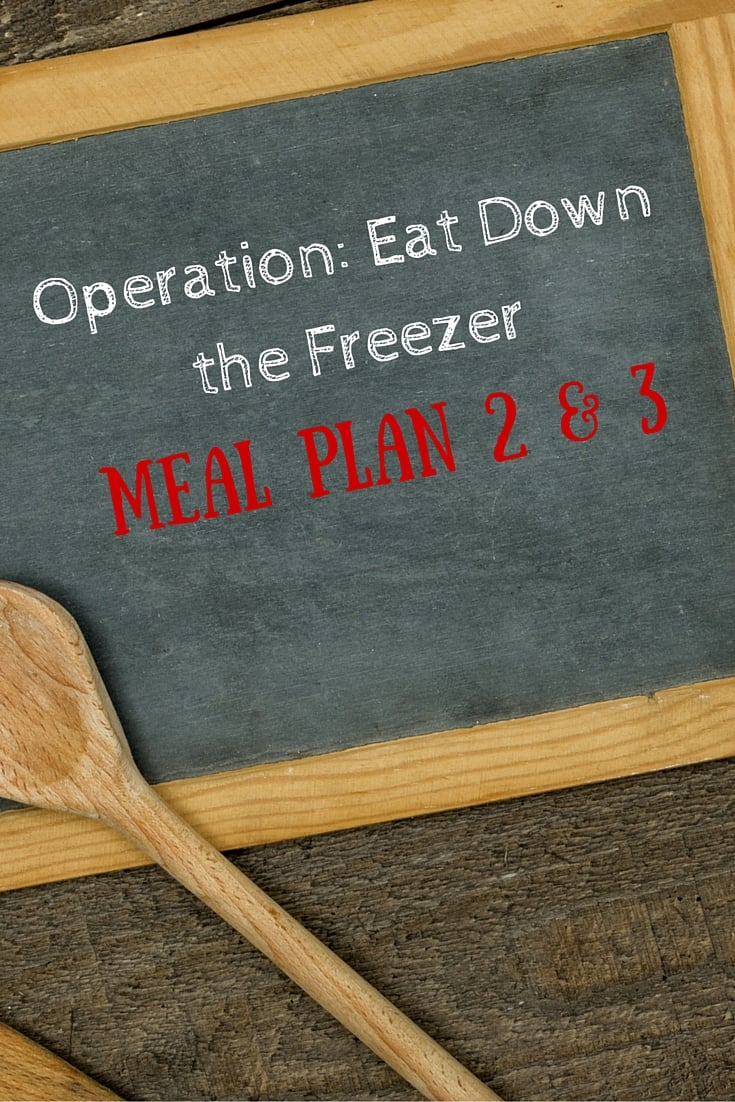 Operation- Eat Down the Freezer- Meal Plan 2 and 3