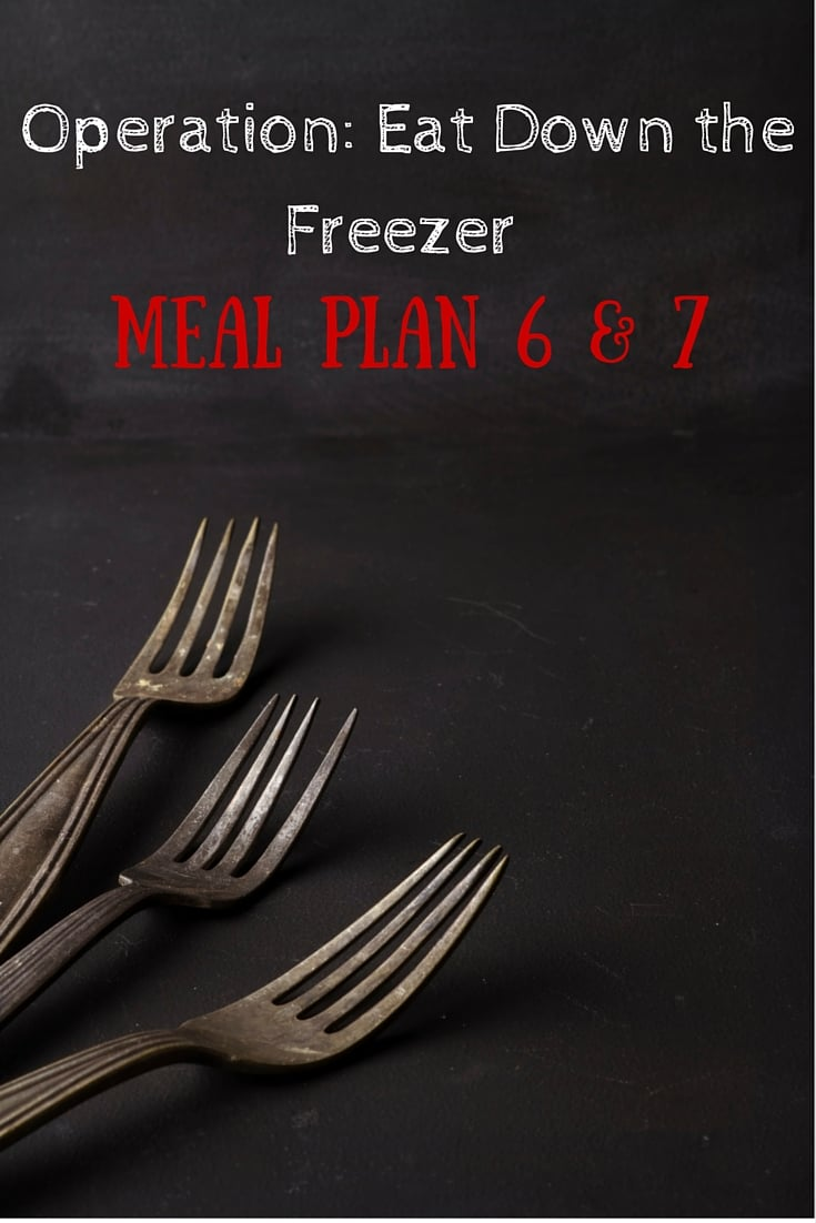 Operation- Eat Down the Freezer Meal Plan 6 and 7