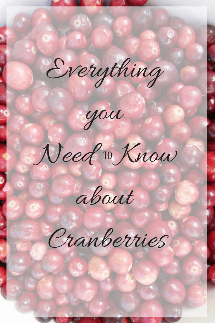Everything you Need to Know about Cranberries