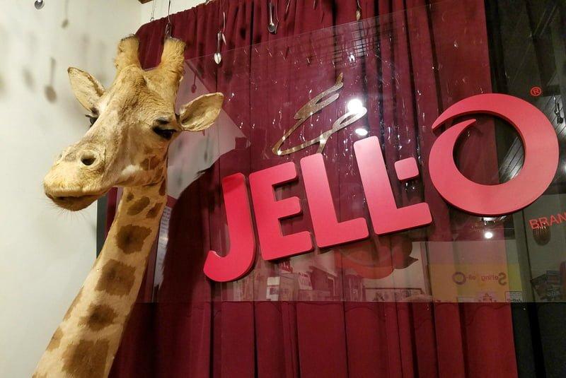 jell-o gallery and giraffe Le Roy NY