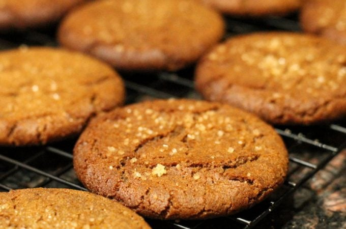 Molasses Ginger Cookie Recipe