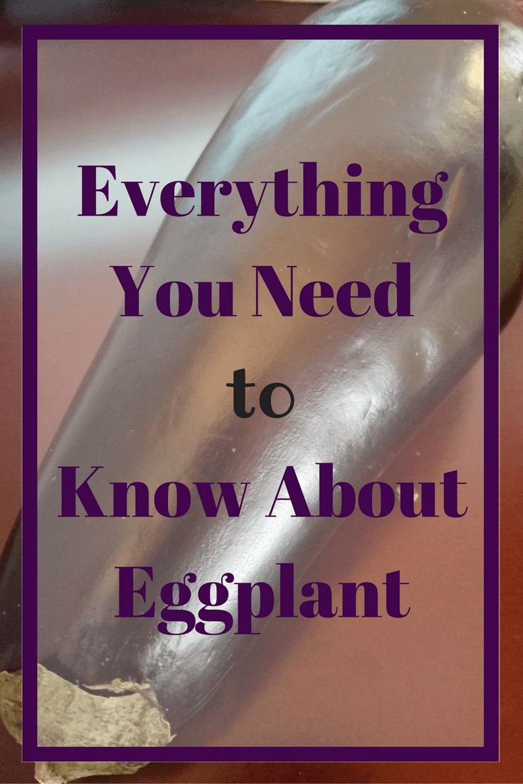 Everything You Need to Know About Eggplant