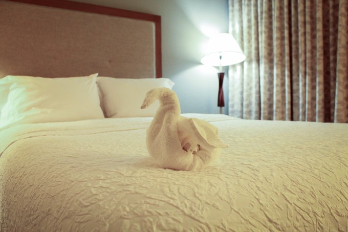 Hampton Inn Wash Cloth Swan